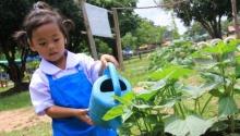 """""""ธรรมนูญสุขภาพ"""" หนุนท้องถิ่นจัดการอาหารในโรงเรียน  """"อาหารโรงเรียนเปลี่ยนชุมชน"""""""