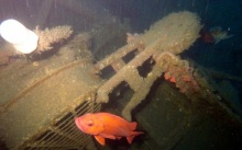 พบเรือลาดตระเวนอับปางนานกว่า100ปี